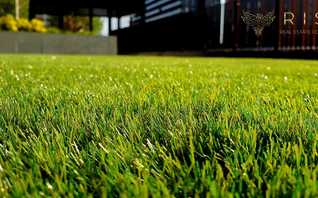 Simple Summer Lawn Care Tips